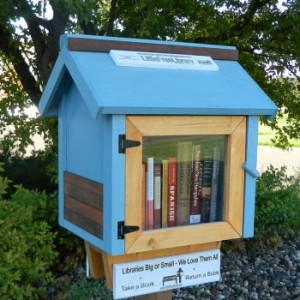 There are plans out there for building your own, but you can also buy premade Little Free Libraries through the organization's site. How adorable is this one?